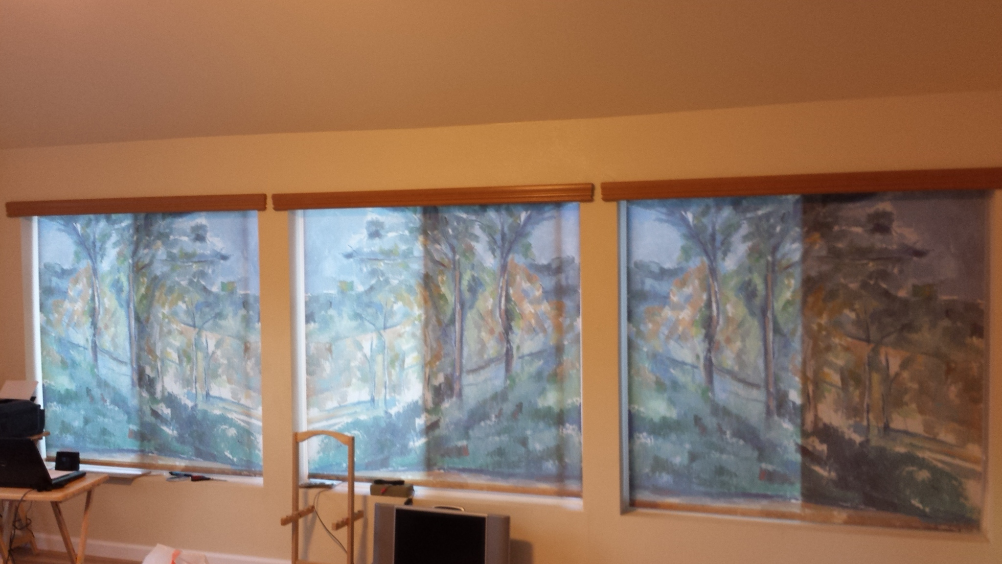 Printed Roller Shades