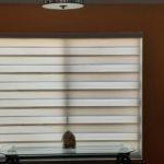 Zebra Shade Light Filtering